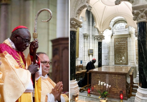 S.E.-le-Cardinal-R.-Sarah-768x537.jpg