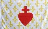 drapeau_esf_fleur_de_lys_blanc_100_150.jpg